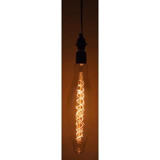 Vintage-Style E26 Large 60-watt Light Bulb and 10-foot Hanging Socket