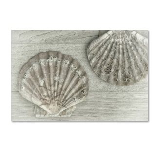 Cora Niele 'Two King Scallop Shells' Canvas Art