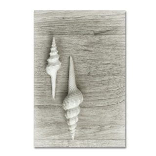 Cora Niele 'Two White Shells' Canvas Art