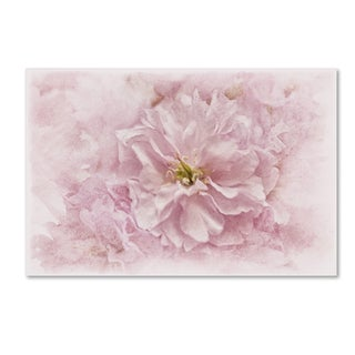 Cora Niele 'Cherry Blossom' Canvas Art
