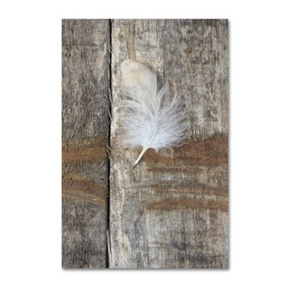 Cora Niele 'Feather on Wood I' Canvas Art