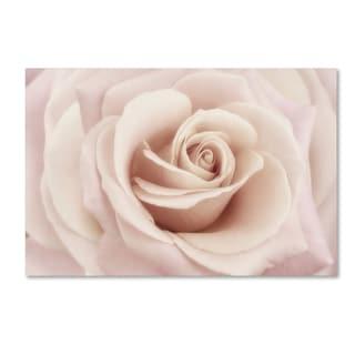 Cora Niele 'Peach Pink Rose' Canvas Art