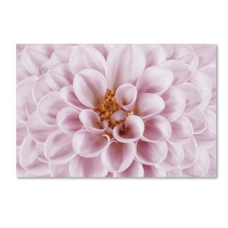 Cora Niele 'Pink Dahlia' Canvas Art