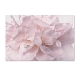 Cora Niele 'Pink Peony Petals II' Canvas Art