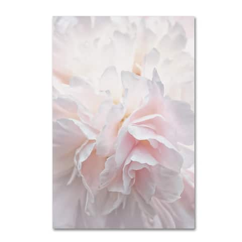 Cora Niele 'Pink Peony Petals IV' Canvas Art