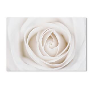 Silver Orchid Crain Cora Niele 'White Rose' Canvas Art