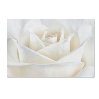 Cora Niele 'Pure White Rose' Canvas Art