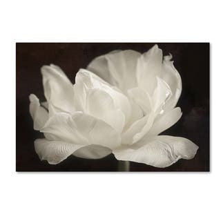 Cora Niele 'White Tulip III' Canvas Art