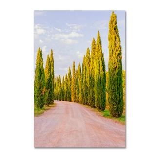 Ariane Moshayedi 'Italian Cypress Trees' Canvas Art