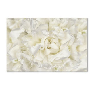 Cora Niele 'White Peony Flower' Canvas Art
