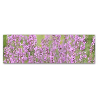 Cora Niele 'Pink Flower Scape' Canvas Art