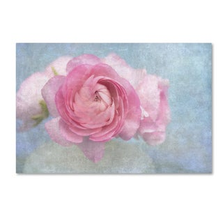Cora Niele 'Pink Persian Buttercup Still Life' Canvas Art