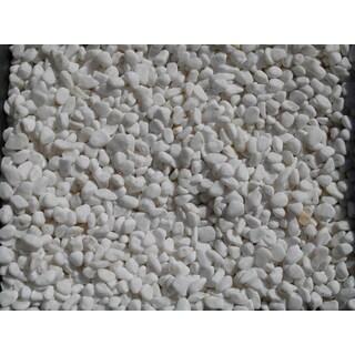Exotic Pebbles & Aggregates BPWS-461 5-pound White Bean Pebble