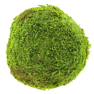 Super Moss 21657 6-Inches Green Moss Ball