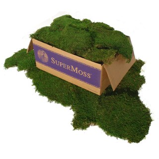 Super Moss 21508 5-Pound Green Sheet Moss