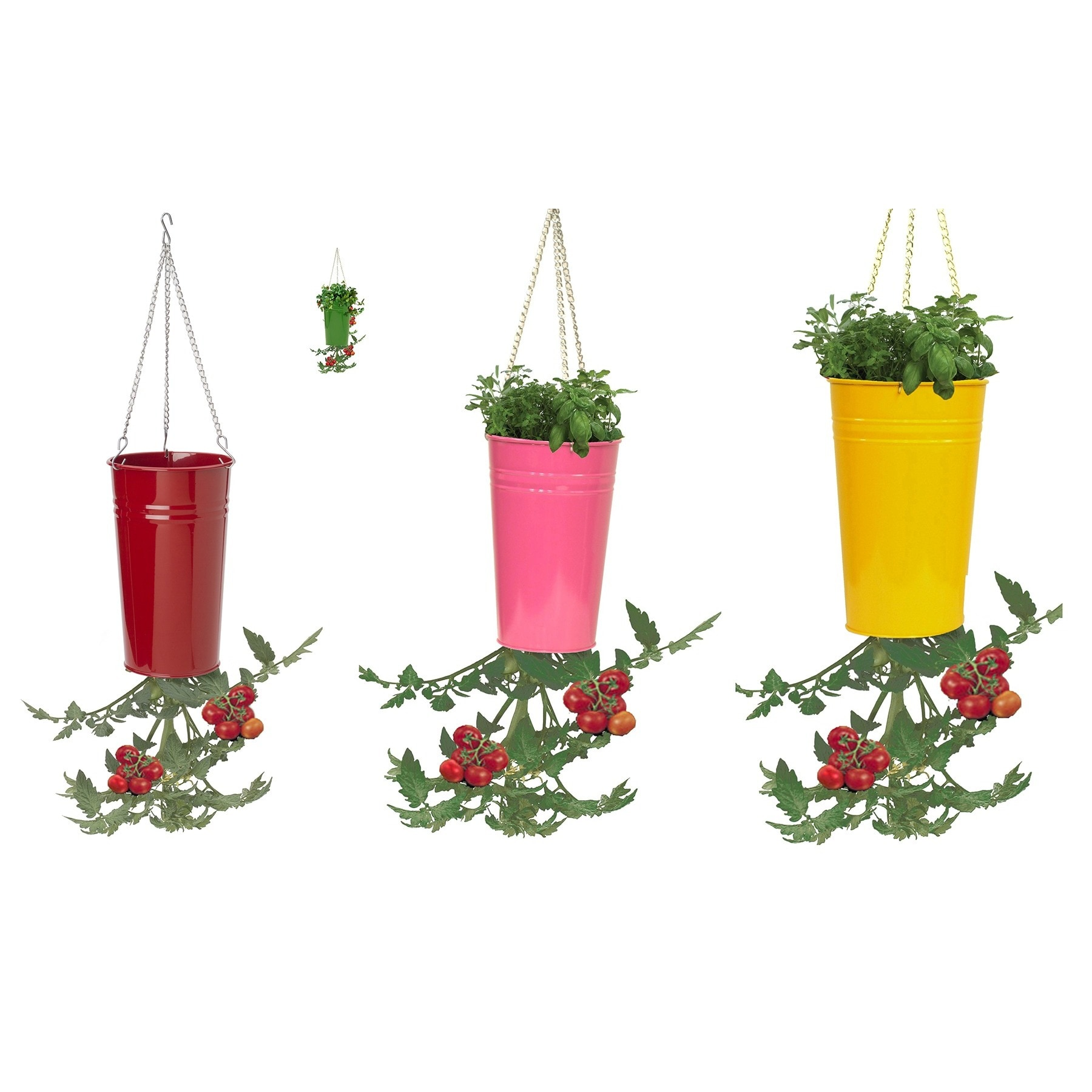 Hit Corp 8398E 7-Inches Steel Hanging Planter Assorted (P...