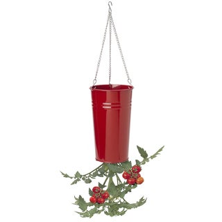 Hit Corp 8398E 7-Inches Steel Hanging Planter Assorted
