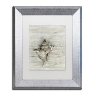 Cora Niele 'Murex Shell' Matted Framed Art