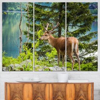 Designart - Deer Stag near the Lake - Animal Canvas Art Print