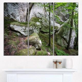 Deep Moss Forest with Rocks - Landscape Art Print Canvas