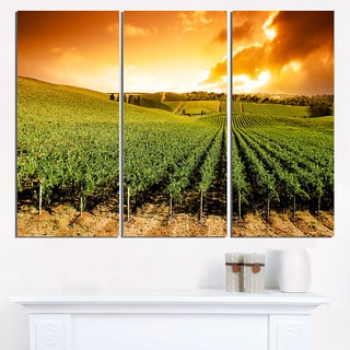 Sunset Vineyard Panorama - Extra Large Wall Art Landscape