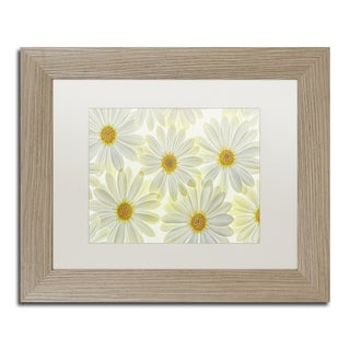 Cora Niele 'Daisy Flowers' Matted Framed Art