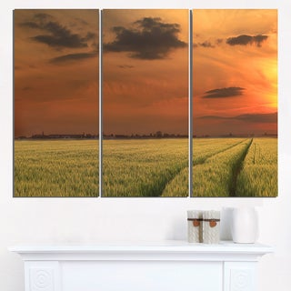 Sunset over a Field of Cereals - Extra Large Wall Art Landscape
