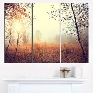 Charming Rural Field in Morning - Extra Large Wall Art Landscape
