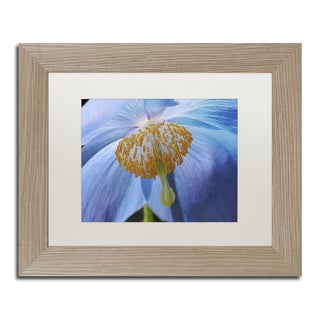 Cora Niele 'Blue Poppy' Matted Framed Art