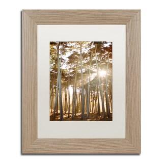 Ariane Moshayedi 'Presidio Sunset Trees' Matted Framed Art