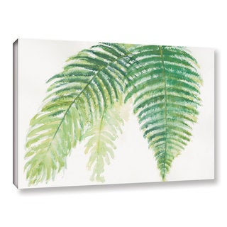 Chris Paschke's 'Ferns III' Gallery Wrapped Canvas