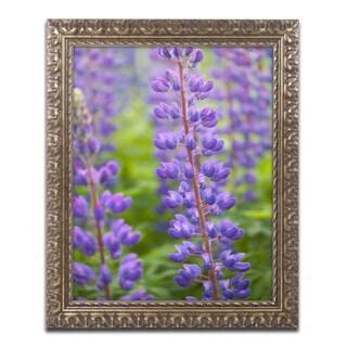 Cora Niele 'Blue Violet Lupine Flower' Ornate Framed Art