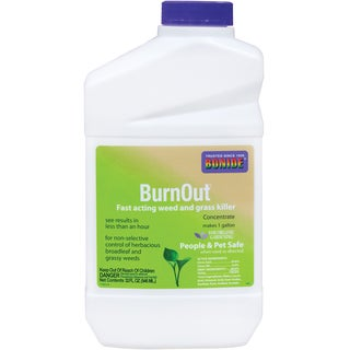 Bonide 7464 1 Quart BurnOut Weed & Grass Killer Concentrate