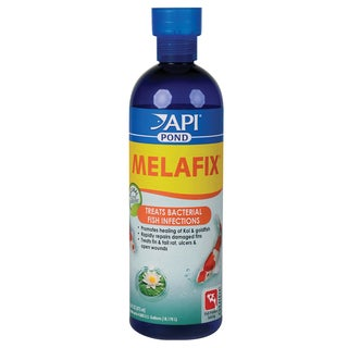 Pondcare 176B 16-ounce MelaFix Pond Antibacterial & Cleaner