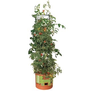 Hydrofarm GCTB Tomato Barrel With 4-feet Tower