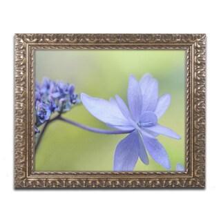 Cora Niele 'Blue Hydrangea' Ornate Framed Art