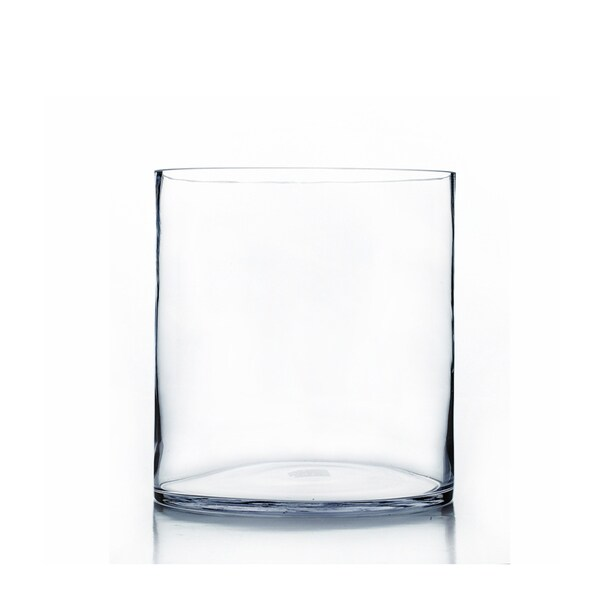 Shop Clear Glass Cylinder 9 Inch X 12 Inch Vase Free