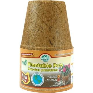 Planters Pride RZR04002 6 pack 4-inch Fiber Grow Pots