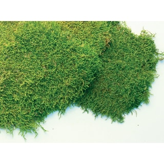 Super Moss 21585 32-ounce Fresh Sheet Moss