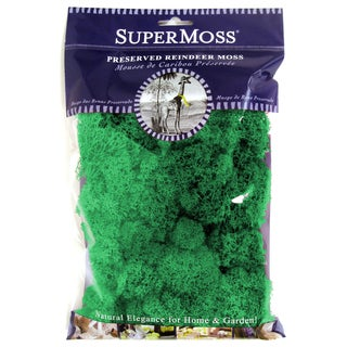 Super Moss 21703 2-ounce Forest Reindeer Moss