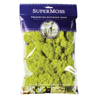 Super Moss 21708 2-ounce Chartreuse Reindeer Moss