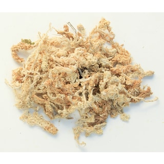 Super Moss 22325 1.9-pound Orchid Sphagnum Moss
