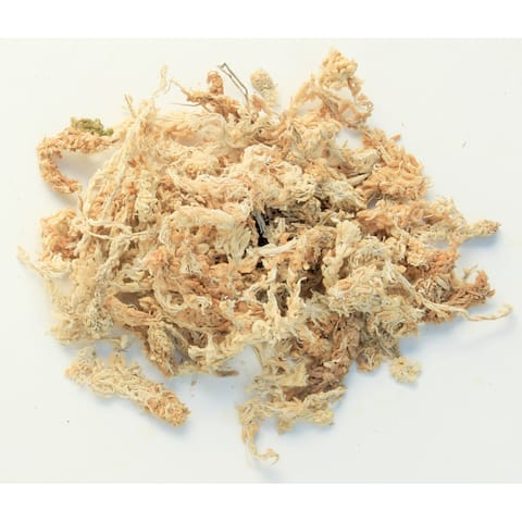 Super Moss 22330 2.2-pounds Orchid Sphagnum Moss