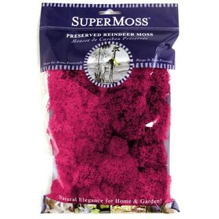 Super Moss 23164 Reindeer Moss Fuchsia