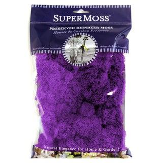 Super Moss 25124 Reindeer Moss Purple