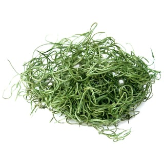 Super Moss 26912 8-ounce Spanish Moss Preserved