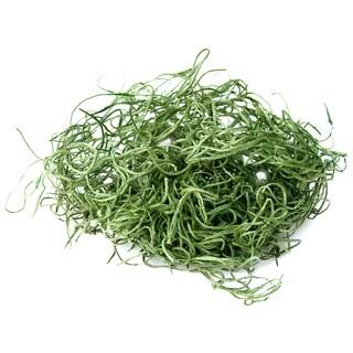 Super Moss 26917 16-ounce Spanish Moss Preserved