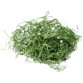 Super Moss 26922 32-ounce Spanish Moss Preserved
