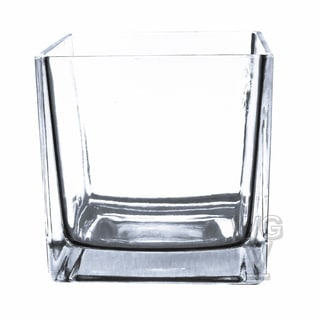 6-inch Clear Cube Vase Utility Grade