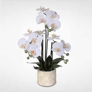 Real Touch Phalaenopsis White Silk Orchid Arrangement in a Stone Pot